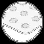 elektrode_2